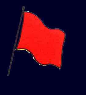 Les drapeaux utilisés en Kart Cross 4